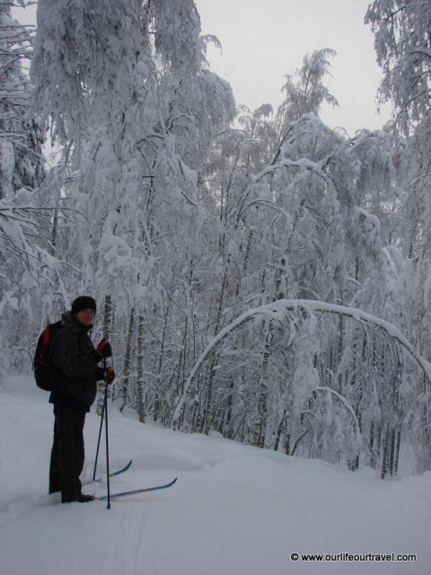 Cross-country skiing in Koli National Park