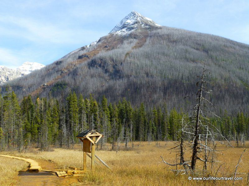 Ochre collecting places, Kootenay National Park